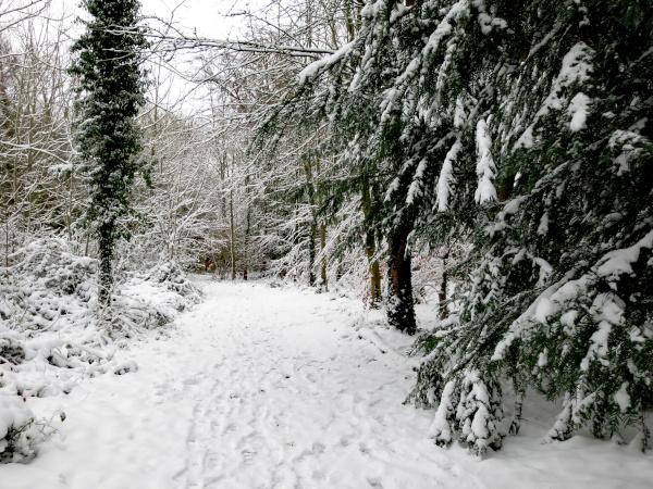 The Serpentine Walk in winter