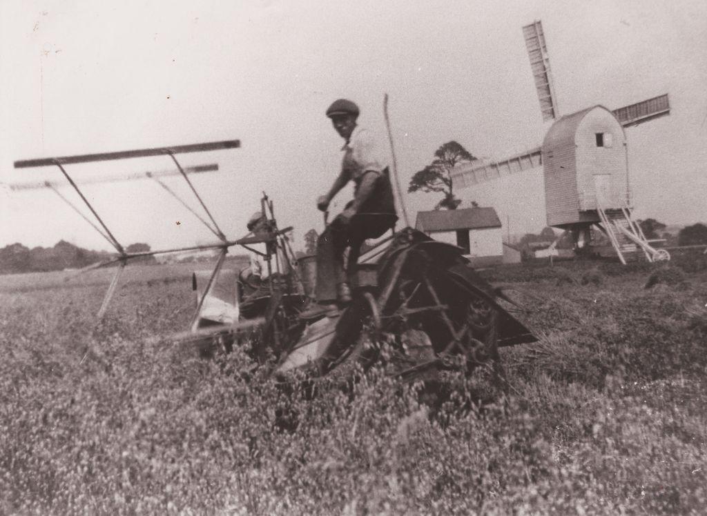 Harvesting near Chillenden Mill