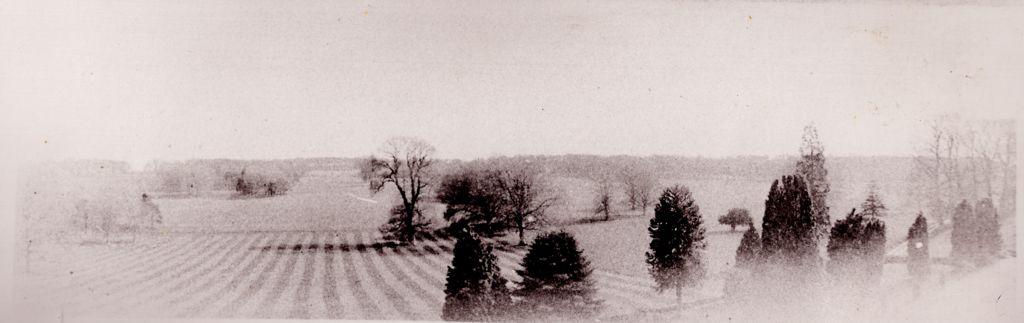 Goodnestone Park showing the parkland c. 1900