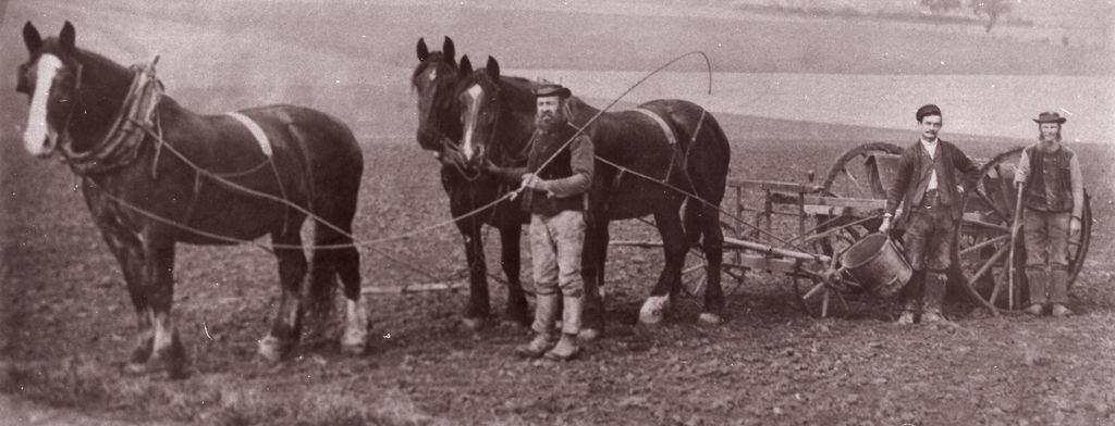 Horse and cart. The Pay family from Chillenden c. 1880